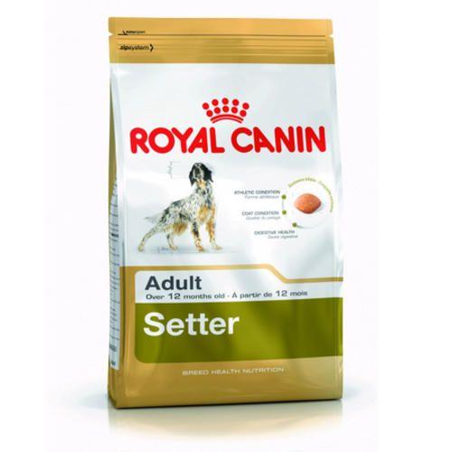 Royal canin setter adult sacchetto da 3kg.  ad Euro 21.90 in #Catalogo > cani > cibo secco > per razze #Animali domestici