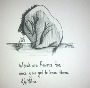 TA.A. Milne on Weeds #quotes
