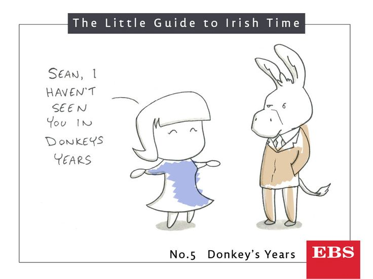 Sure 'donkey's years' could be last Saturday or six months ago. What does it actually mean? According to our survey, the average is 14 years and 59 minutes.  An actual donkey lives 30 - 50 years. Just so you know.
