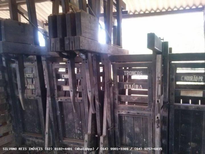 FAZENDAS A VENDA EM GOIAS RESUMO Tamanho: 484 Hectares (100 Alqueires) Localidade: Morrinhos - GO Investimento: R$ 12.500.000,00 Tipo: Agricultura/Pecuária Finalidade: Venda Forma de Pagamento: 1 + 2X FAZENDA DE LUXO - 100 ALQUEIRES (484 HECTARES) NO MUNICÍPIO DE MORRINHOS-GO.  SILVANO REIS IMÓVEIS www.silvanoreisimoveis.com.br (62) 8182-4401 (WhatsApp)