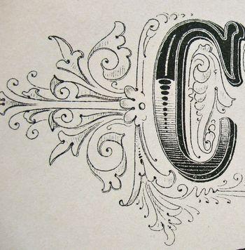 hand lettering font design