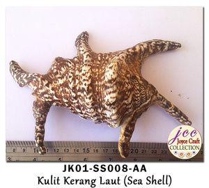 Kulit Kerang Untuk Craft,  Kerajinan Tangan & Hobby - JK01-SS008-AA