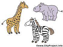 Tierbilder Comic Tierbilder Tiere Bilder