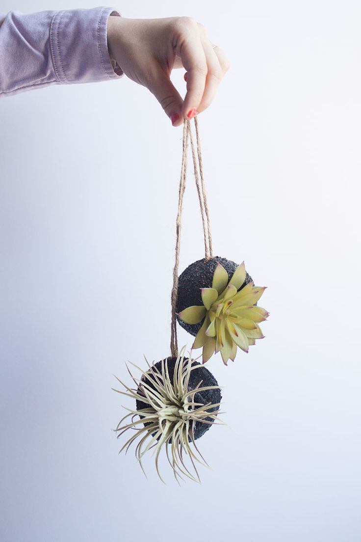 Unique diy home garden decor with a shoe planter and succulents - Hanging Faux Succulent Planters From Tennis Balls Since We Re Certainly Not Lacking In Tennis Balls