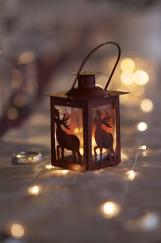 346 Best Fairy Lights And Candle Light Images On Pinterest