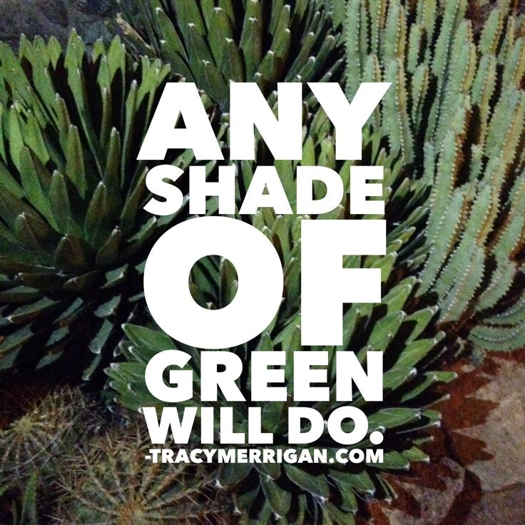 #StPatricksDay all shades of green. Made Me Smile #mms