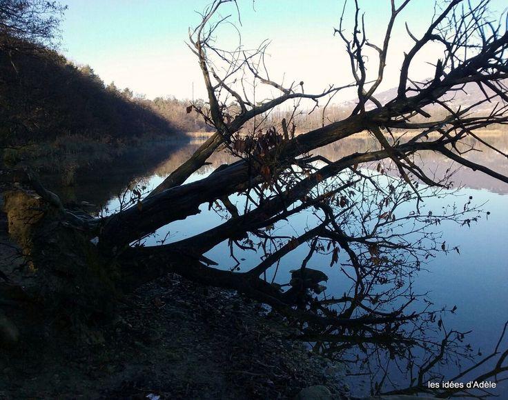 Pomeriggio invernale sul lago
