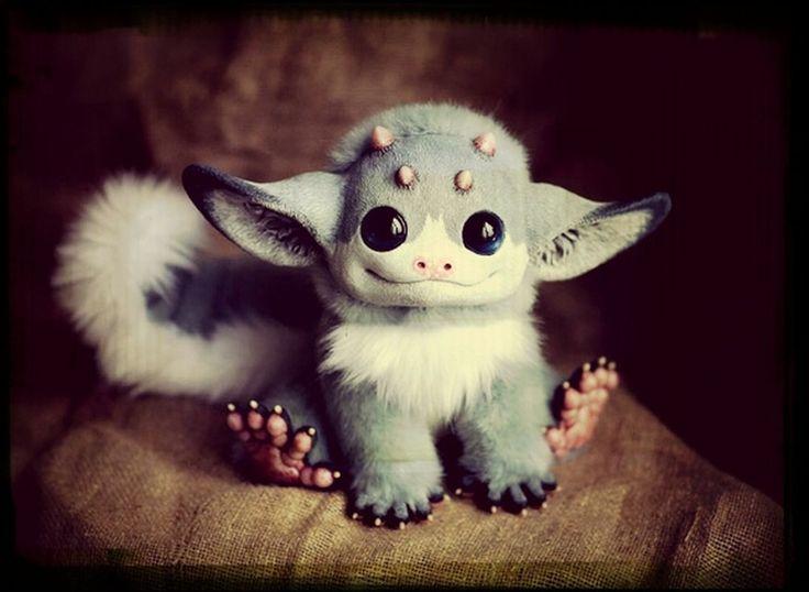 Little dragon *w*