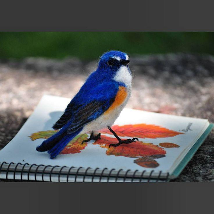 羊毛フェルト★ルリビタキ♂♪ Needle felted/Tarsiger cyanurus♂ * 先日の『幸せの青い鳥』完成~ * 日本にいるルリビタキは夏季に本州中部以北、四国で繁殖し 冬季になると本州中部以南で越冬します(ウィキペディアより) オオルリのように海外旅行はなく、1年中日本のどこかにいます(笑) * #羊毛フェルト#ルリビタキ#幸せの青い鳥 #ニードルフェルト #ハンドメイド #野鳥#鳥#小鳥 #絵 も#水彩色鉛筆 で#描いたよ ~#ミズナラ  #needlefelting #tarsigercyanurus #redflankedbluetail  #felt#felting #felted #wool#work#handmade#wildbirds  #wildbird #bird#birds #instabird #instabirds #instagood