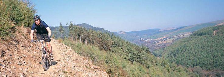 http://www.plasdev.co.uk/walescottages/assets/mountain-biking-uk.jpg