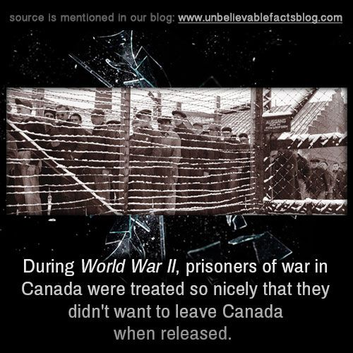During World War II, prisoners of war in Canada were treated so nicely that they didn't want to leave Canada when released.