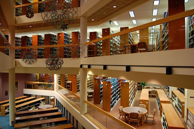 Law Library in Indiana University: Rap