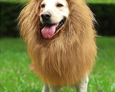 Crinière lion Perruque pour Grand Moyen Chiens avec Oreilles Drôle Cadeaux Animal Crinière Perruque de Lion Drap Bouton Réglable Noël…