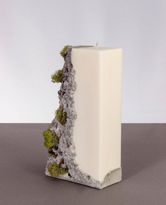 Candle | soy wax, concrete and natural dried moss