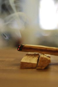 Palo Santo - The cheapest, longest lasting nature made insence on the planet.  You home will smell divine after using it for just a few minutes.