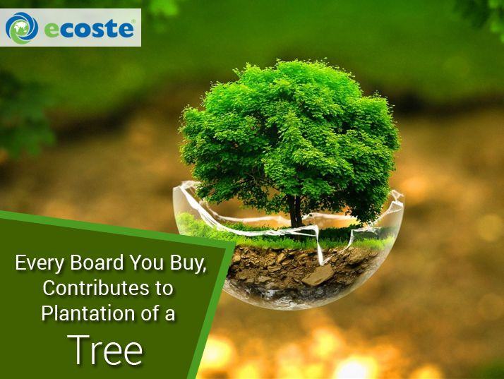 Save the Planet with Ecoste Green #Products for a sustainable Environment