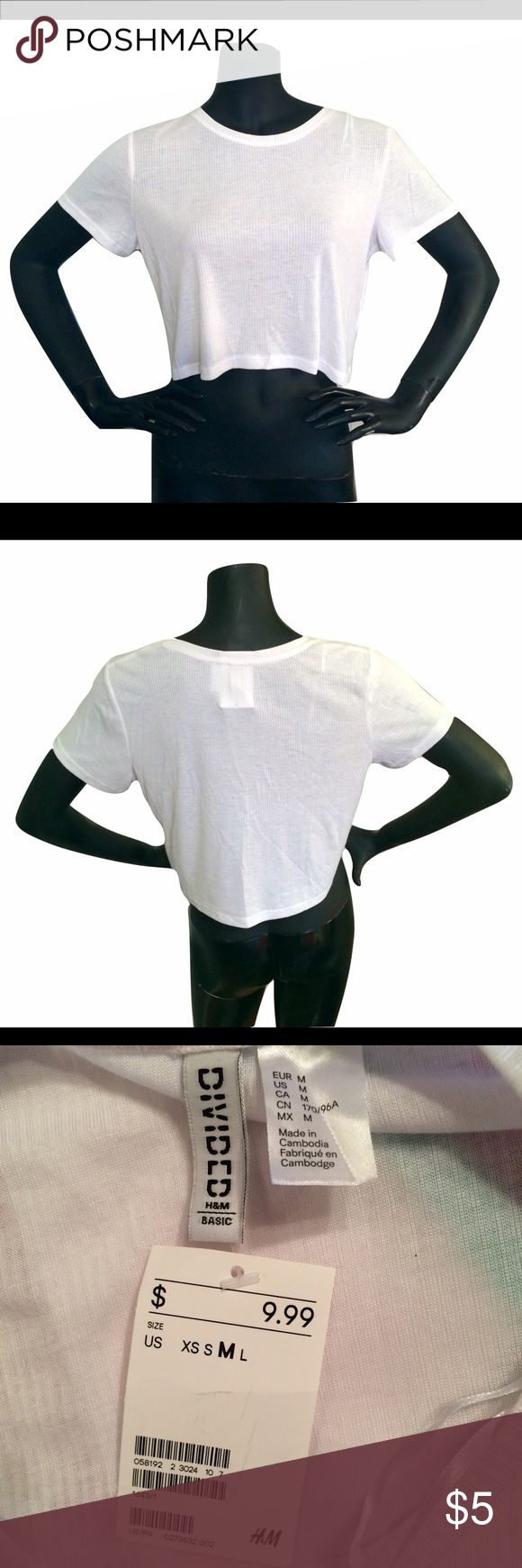 """White Short Sleeve Top Divided White Short Sleeve Top Divided Brand New With Tags All Measurements Approximate  Neck-8.5"""" Shoulder-15.5"""" Sleeve-6.5"""" Chest-16"""" Length-17.5"""" Divided Tops Tees - Short Sleeve"""