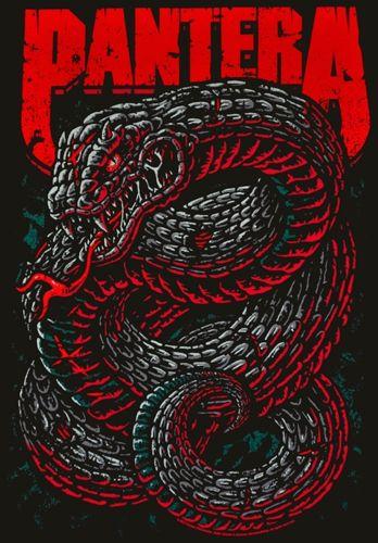 Image de T-Shirt Mec PANTERA - Venomous