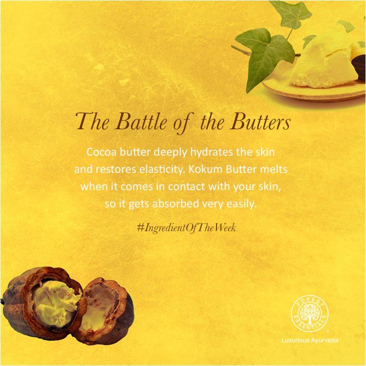 Cocoa vs. Kokum – Which butter is better? Cocoa Butter restores elasticity to the skin and Kokum Butter helps regenerate skin cells!