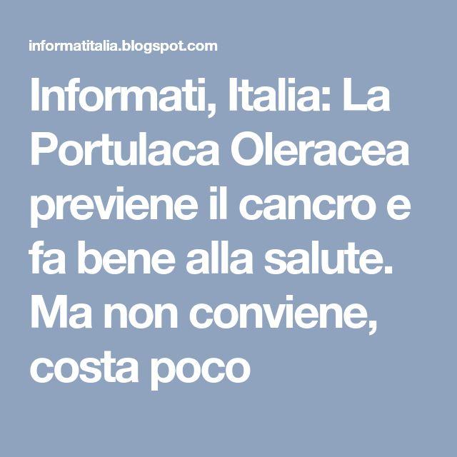 Informati, Italia: La Portulaca Oleracea previene il cancro e fa bene alla salute. Ma non conviene, costa poco