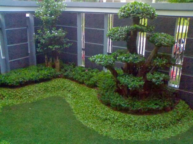Tukang Taman | Jasa Tukang Taman | Rumput Taman: Tukang Taman Minimalis | Jasa Pembuatan Taman & Re...