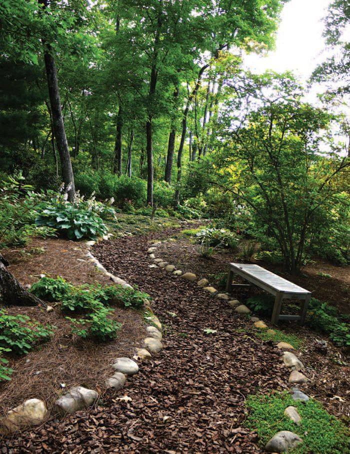 Landscape Design Tip: Wild and woodland gardens may consist of native plants or be a mix of ornamental and natural plantings such as grasses, mosses, ground covers, large and small shrubs, evergreen and deciduous trees. #landscapedesign