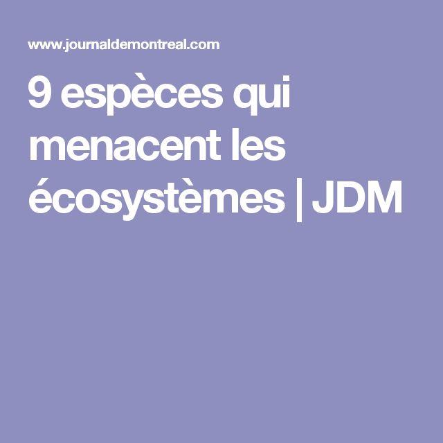 9 espèces qui menacent les écosystèmes | JDM