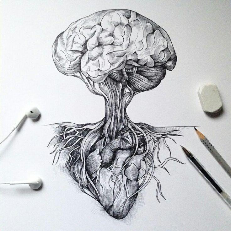 Naturaleza y tinta. Las ilustraciones de Alfred Basha.