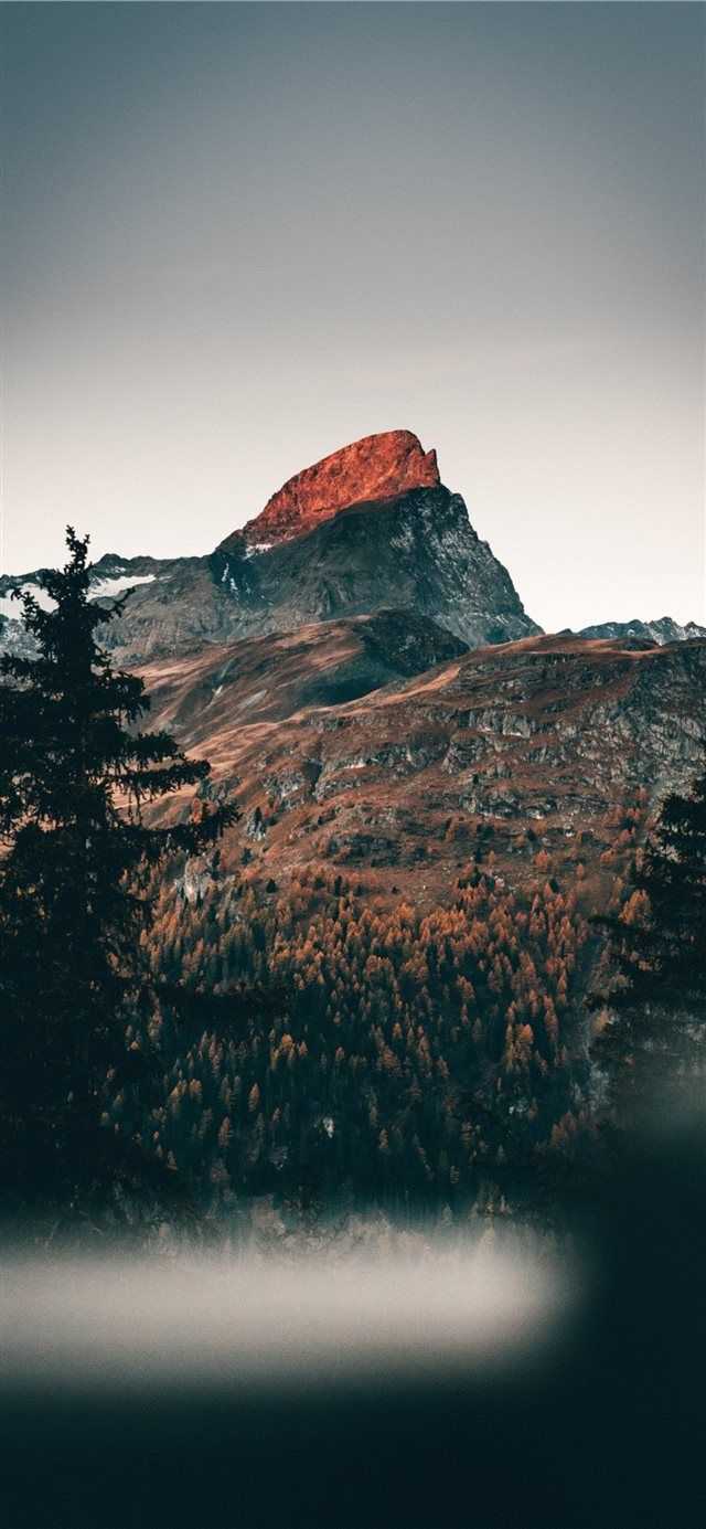 16 Adventurous Forest Mountain Iphone 7 Wallpapers Preppy Wallpapers Nature Iphone Wallpaper Iphone 7 Wallpapers Nature Wallpaper
