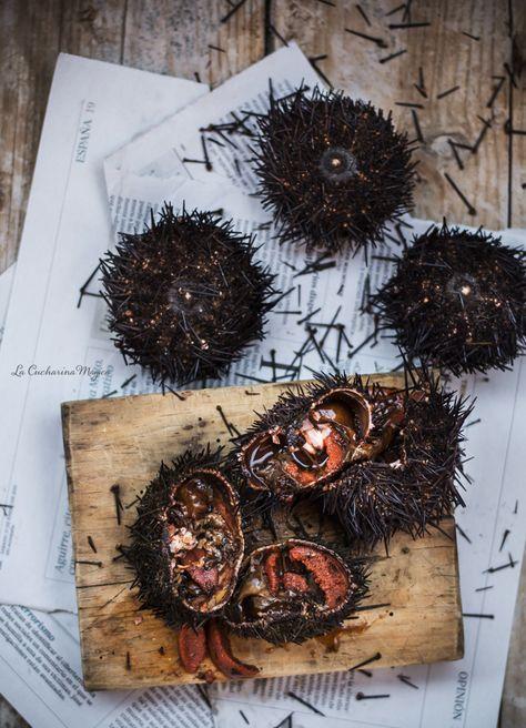 Cómo cocer erizos de mar, oricios o arcinos