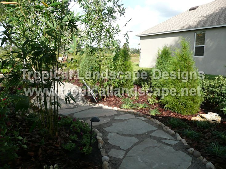 Tropical landscaping designs of tampa bay outdoor spaces for Landscape design tampa