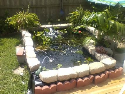 Cheap fish and plant pond from concrete blocks and pond for Cheap pond ideas