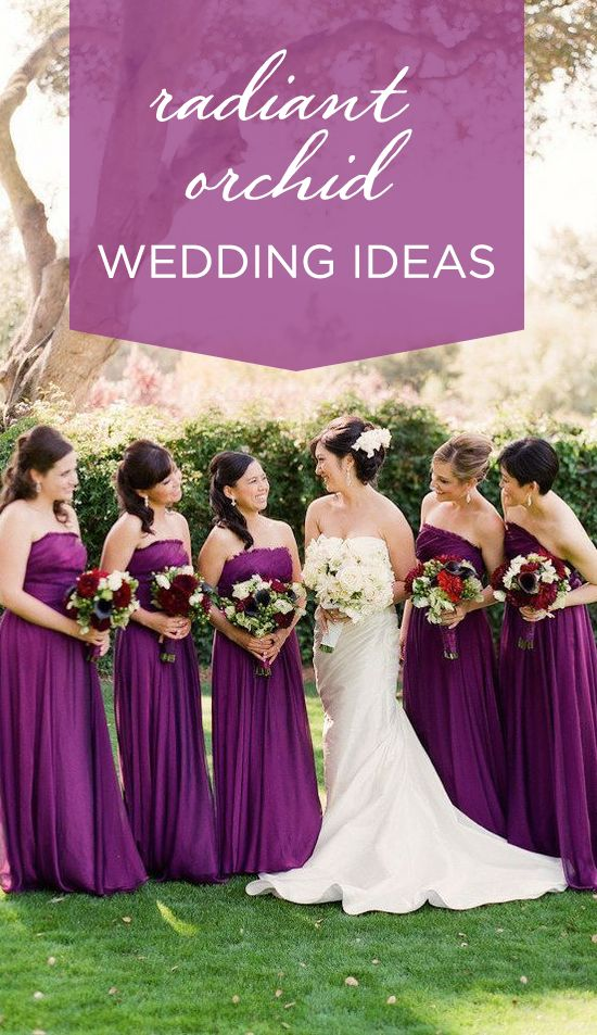 10 best wedding color themes images on pinterest wedding color pantone color of 2014 radiant orchid junglespirit Image collections