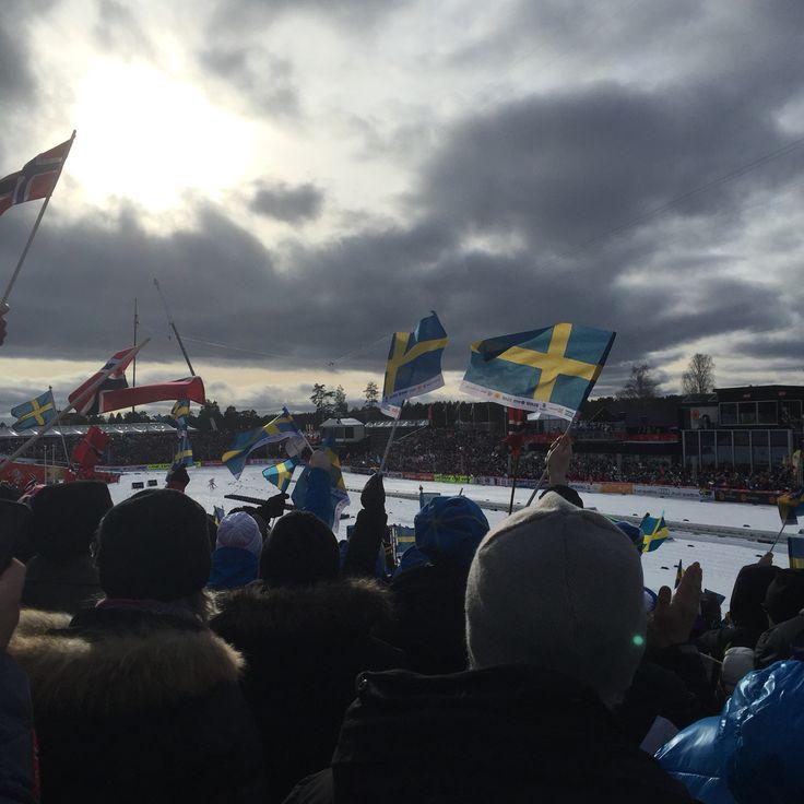 VM Falun 2015