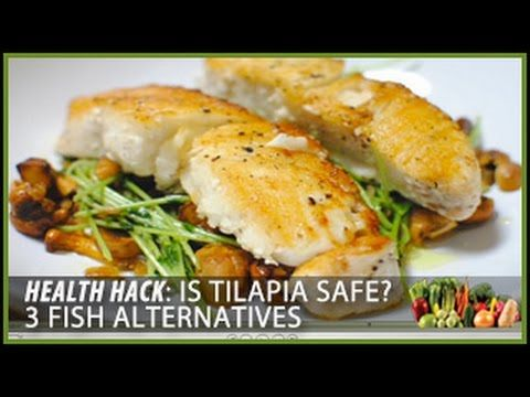 Is Tilapia Safe? 3 Fish Alternatives from Health Hacks with Thomas DeLauer is an in-depth look into the truth about Tialpia and the many misconceptions that ...