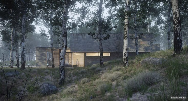 30-house-in-the-forest-view-1-juan-k-torres - Ronen Bekerman - 3D Architectural Visualization & Rendering Blog