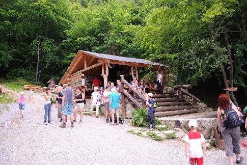 Dolní lesní bar rozhodně žije!