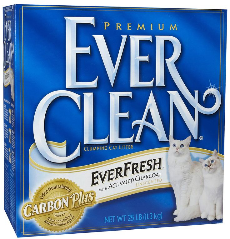 Ever Clean EverFresh Unscented Litter with Activated