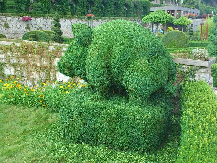 Topiary park - Belgium. Topiaries are plants, mainly box trees, that are pruned in all possible forms.
