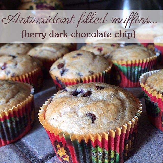 Berry chocolate chip muffins - antioxidant filled goodness!