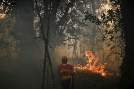 Le Portugal a connu ce week-end une forte canicule, avec des températures dépassant les 40 degrés dans plusieurs régions.  Relativement épargné en 2014 et 2015, le pays avait été durement touché l'an dernier par une vague d'incendies qui avaient dévasté plus de 100.000 hectares sur son territoire continental.  Sur l'île touristique de Madère, où les feux ont fait trois morts en août, 5.400 hectares sont partis en fumée en 2016.