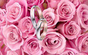 Snubní prsteny v kombinaci bílého a červeného zlata. Dámský prsten zdoben briliantem.