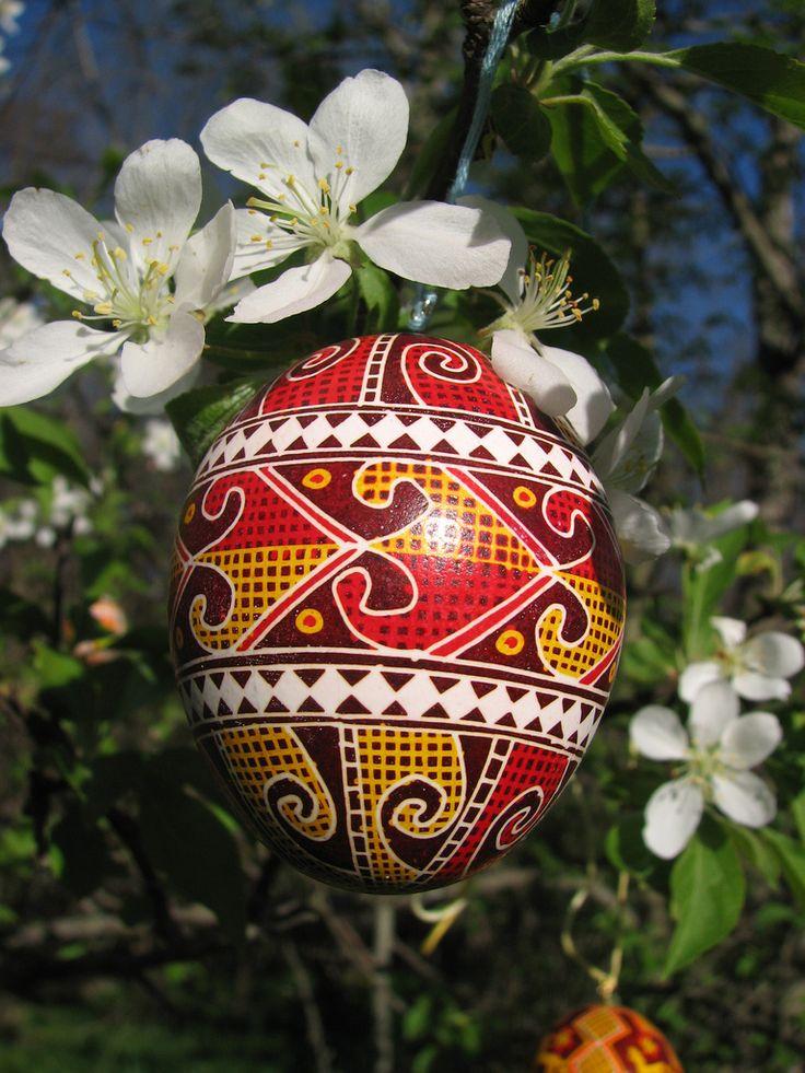 Pysanky. Ukrainian Art Form. Pysanka Eggs.