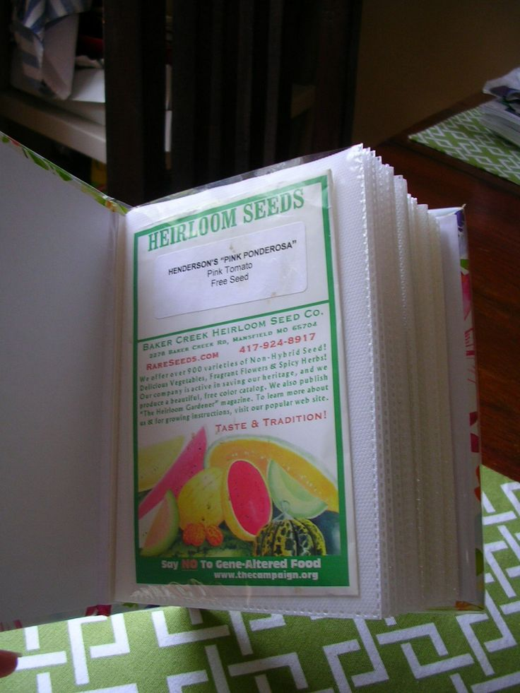 seed packet storage in small photo album