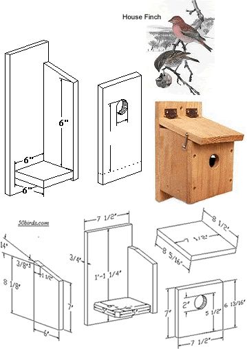 Finch Bird House Plans Finch Birdhouses 2 You Must Create A Safe Environment How To Build A Yellow Finch Birdhouse Building
