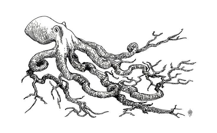 Nombre científico: Octoradix aserrina Nombre común: Abedulpo Hábitat: Las diferentes especies de abedulpos viven en grandes comunidades en los fondos marinos cercanos al talud continental, forman sendos bosques que decoran esta parte de la morfología marina y a veces llegan a crecer tanto que sus cabezas/copas se asoman en la superficie; hay que podarlos, y a esta acción se le llama talar continental.   by froybalam.deviantart.com on @DeviantArt
