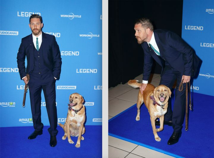 Tom Hardy Shares Loving Tribute To His Rescue Dog After Tragic Death