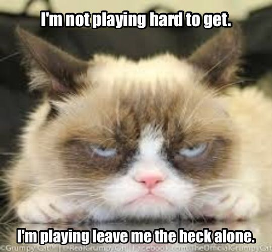 Grumpy Cat: I'm not playing hard to get ... I'm playing leave me the heck alone. #cats #humor #grumpy