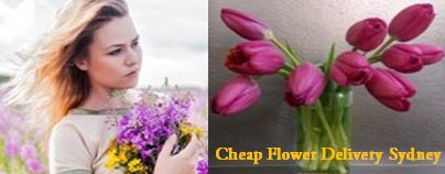 Get Cheap Flower Delivery online from Darling Buds. We are Sydney Florists provide Funeral Flowers, floral arrangements and sympathy flowers for all occasions.