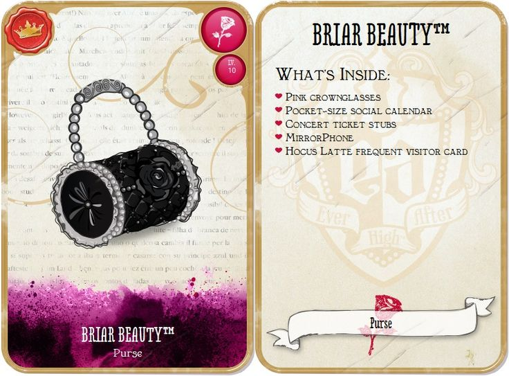 BRIAR'S PURSE
